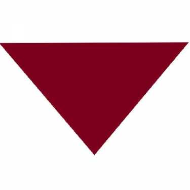 "Burgundy Triangle Bandanas 22"" x 22"" x 30 (12 Pack)"