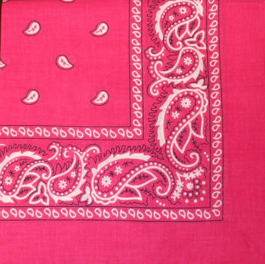 "Hot Pink Paisley - 22"" x 22"" (100% Cotton)"