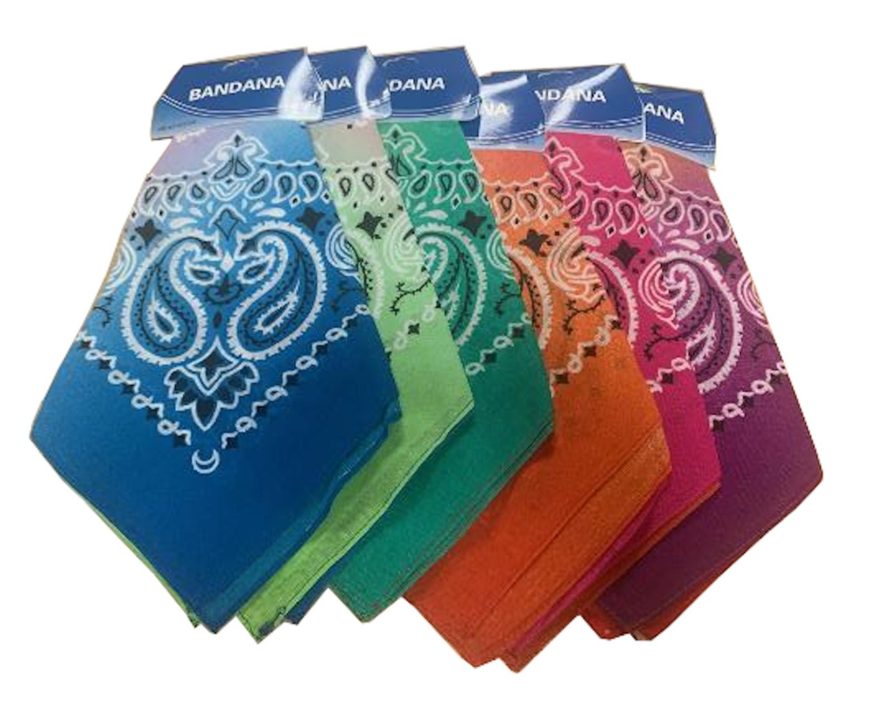 "Multi Color Assorted Paisley Bandanas (6 Pk) 22"" x 22"""