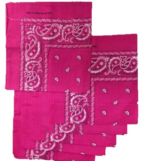 "Hot Pink Paisley Bandanas (12 Pk) 22"" x 22"" 100% Cotton"