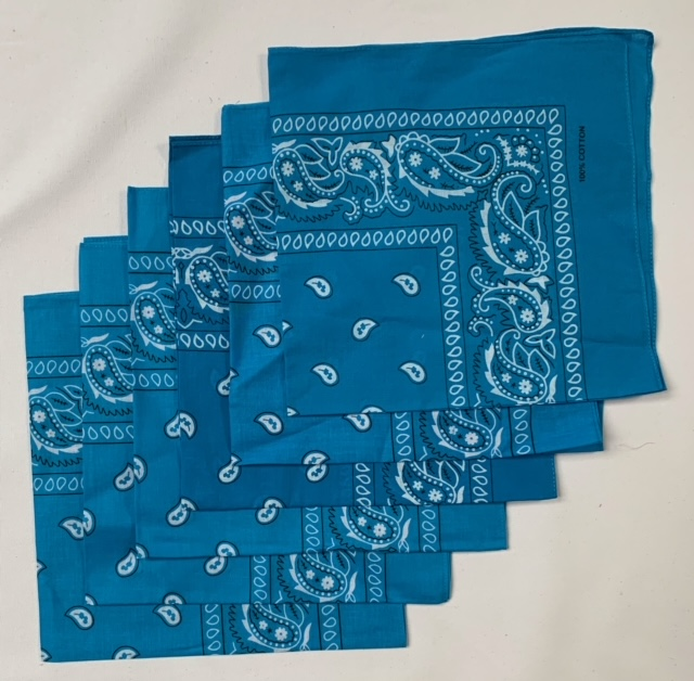 "Turquoise Paisley Bandanas (6 Pack) 22"" X 22"" 100% Cotton - Click Image to Close"