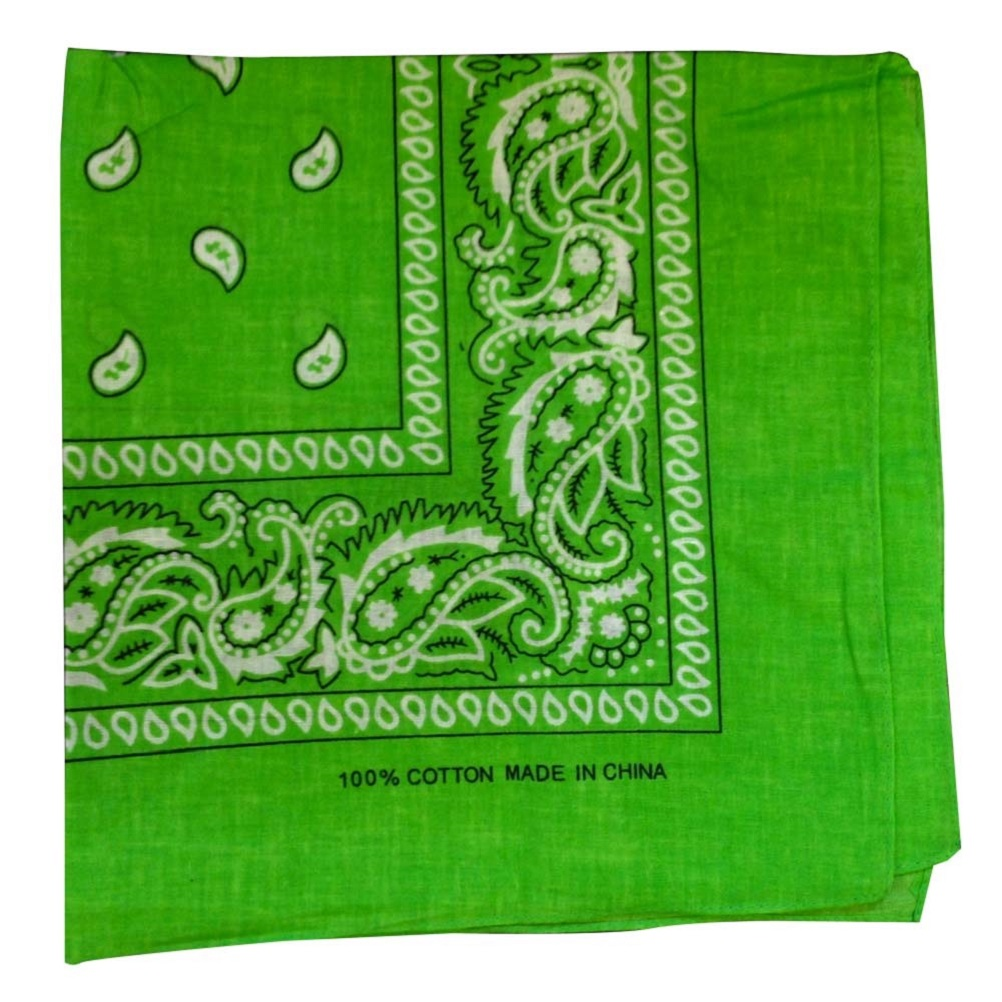 "Light Green Paisley - 22"" x 22"" (100% Cotton)"