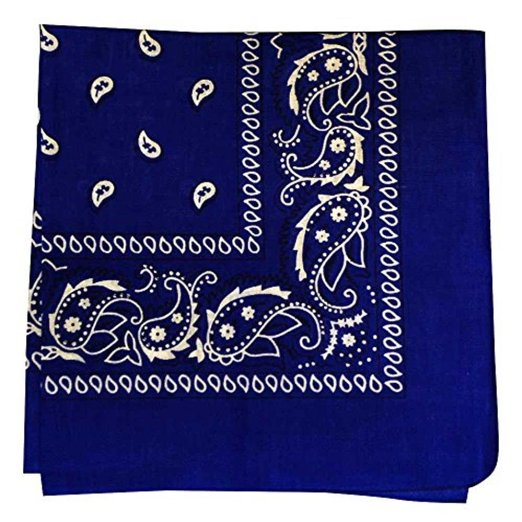 "Navy Paisley Bandana - 22"" x 22"" (100% cotton)"