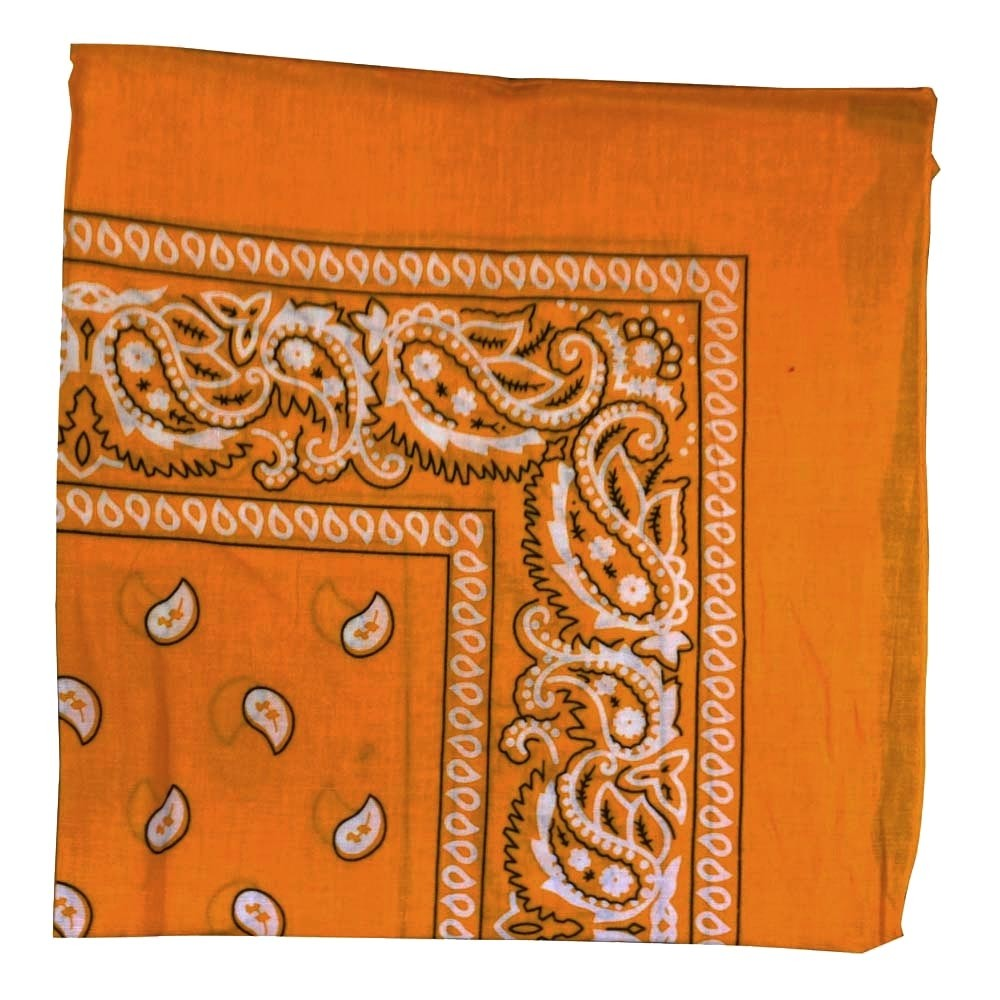 "Orange Paisely Bandana - 22"" x 22"" (100% cotton)"