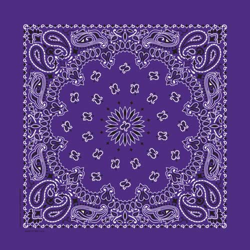 "Purple Paisley Bandanas - USA Made (12 Pk) 22"" x 22"""