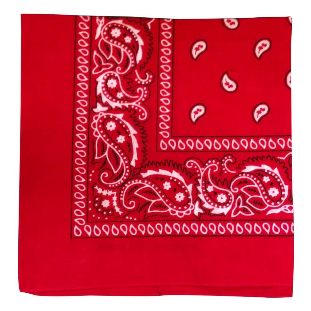 "Red Paisley Bandana - 22"" x 22"" (100% cotton)"