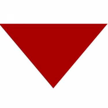 "Red Triangle Bandanas 22"" x 22"" x 30"" (12 Pack)"